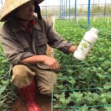 Vietnamese partner in the country has just shared with us some super positive farmers' feedback.