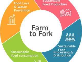 Farm to Fork Strategy, aimed at developing a fair, healthy and environmentally friendly food system